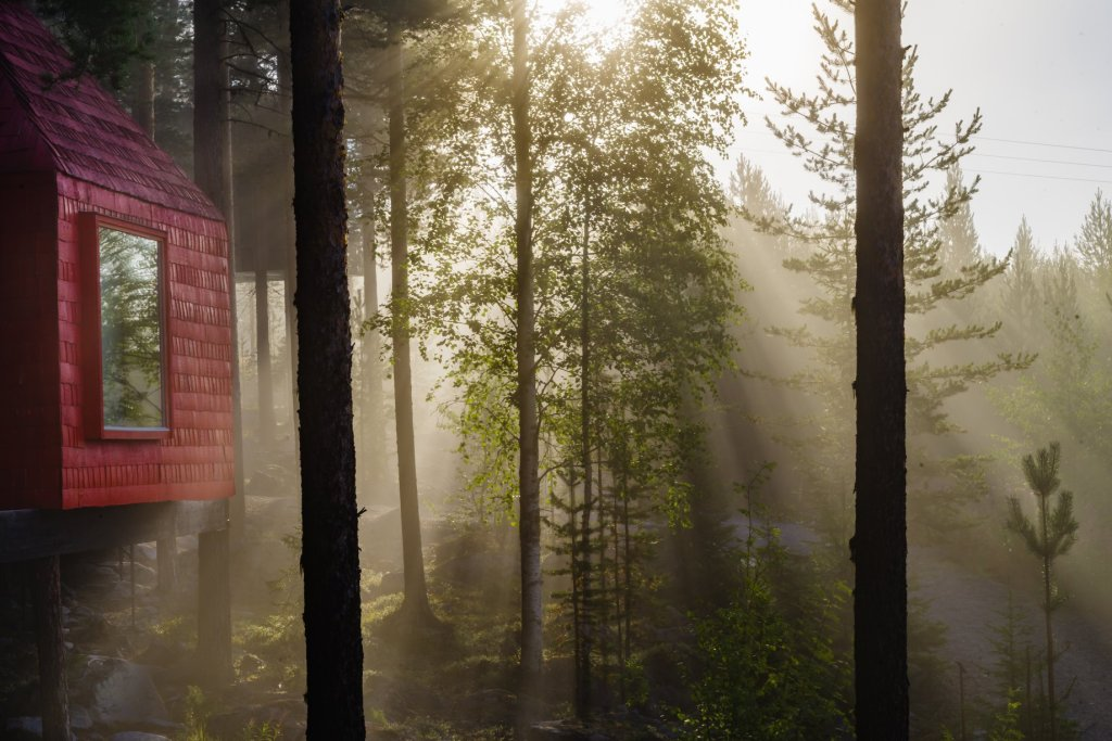 CCTravelHub - The Blue cone (Treehotel, Sweden)