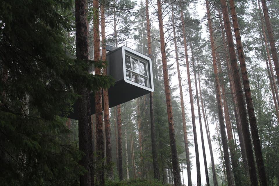 CCTravelHub - The Cabin (Treehotel, Sweden)