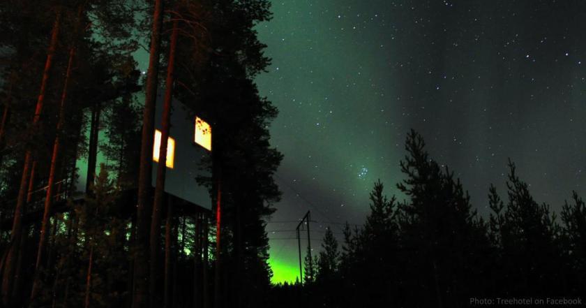 CCTravelHub - Treehotel, Sweden