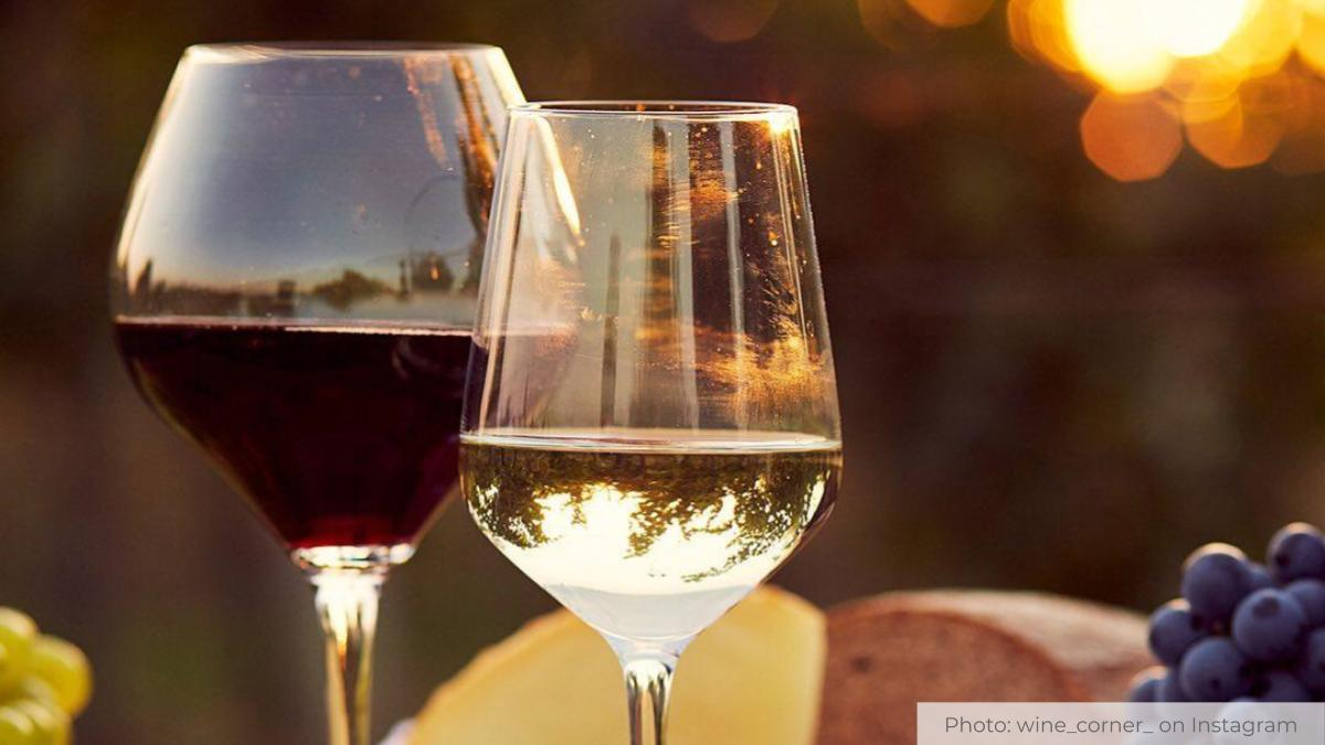 Things to Remember When Gearing Up for Wine Country Adventures